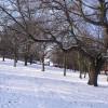 冬道や雪道でもとても暖かいブーツ。ノースフェイスのヌプシブーティー